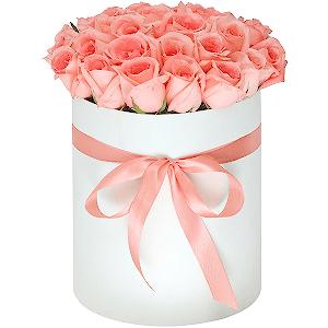 Камышин доставка цветов купить искусственные цветы оптом в сарат